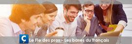 11Le Fle des pros - Les bases du français